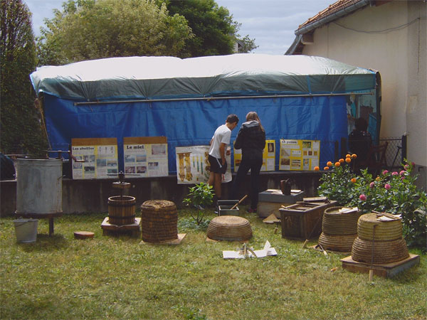 Apiculture : ruches anciennes